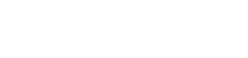Outsourcing & Consulting